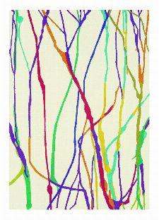 Bild: Designerteppich Estella Drip 878101 - Bunt