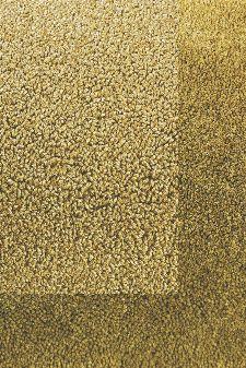 Bild: Schlingenteppich mit Frisee Bordüre Twinset Frame (Khaki; 250 x 350 cm)