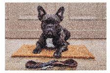 Bild: ASTRA Schmutzfangmatte - Deco Print Bulldogge