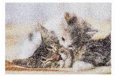 Bild: ASTRA Schmutzfangmatte -Deco Print Kitten